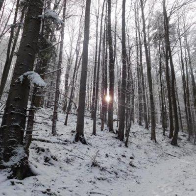 KST Hnúšťa- Tŕstie